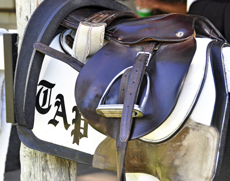 Todd Pletcher Racing and Exercise Saddle