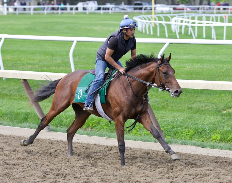 Bill Mott Trainee working out on the Oklahoma Training Track at Saratoga