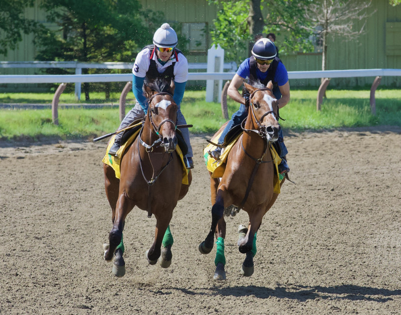 Getting Up in Saratoga for early morning Workouts