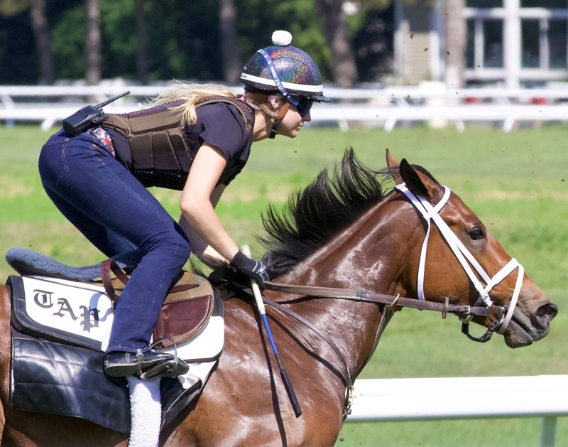 My Morning Workout with a female Exercise Rider in the saddle.