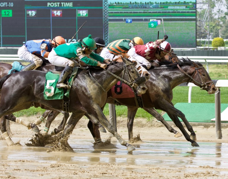 New York Breds battling heads apart in the slop at Belmont Park