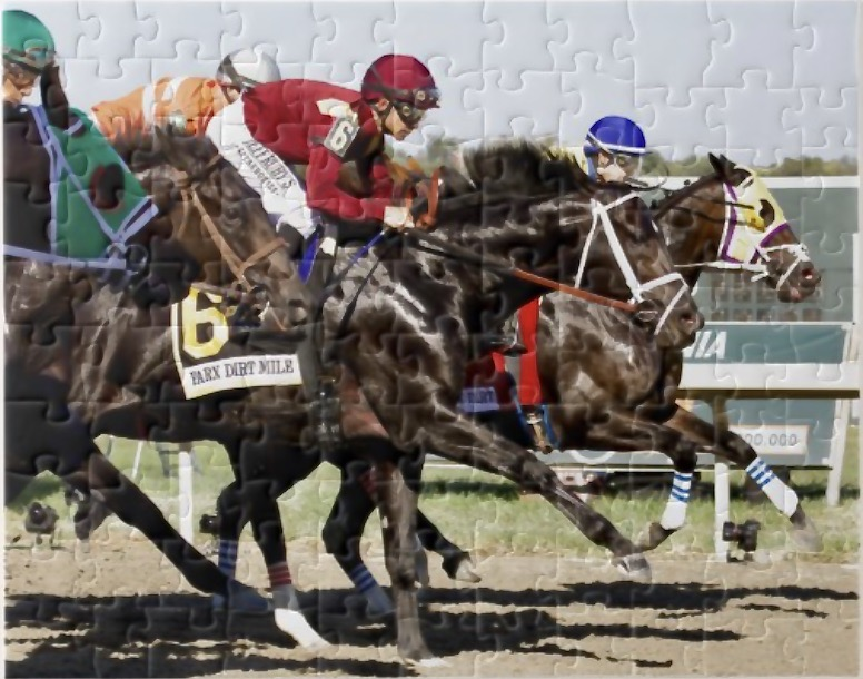 CUSTOM HORSE RACING PHOTOS AND GIFTS