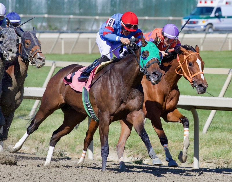 Trace of Grace winning the Plum Pretty stakes at Parx